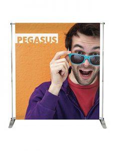 Pegasus_display